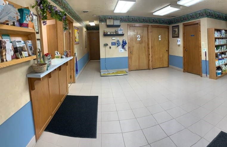 After entering both doors, you will find yourself with this view of our facility. Directly to the left takes you to the receptionist desk where you will check in. To the right will be the waiting room.