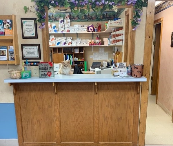 After entering the facility, this is the check-in desk where you will find a friendly face of one of our team members.
